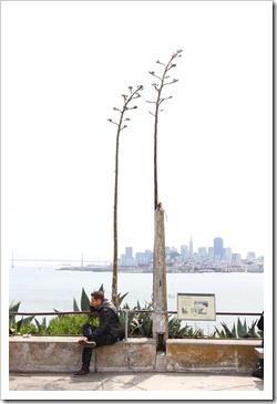 120408_Alcatraz_142