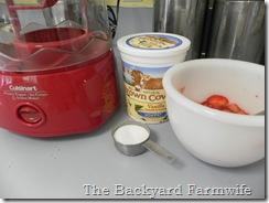 strawberry fro yo 02
