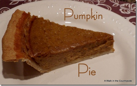 A Walk in the Countryside: Best Pumpkin Pie by Libbey's