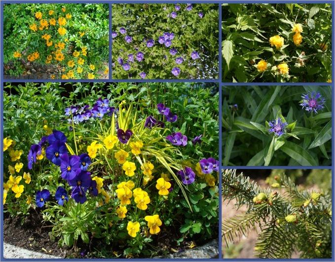 2010-05-11 arboretm trompenburgh4