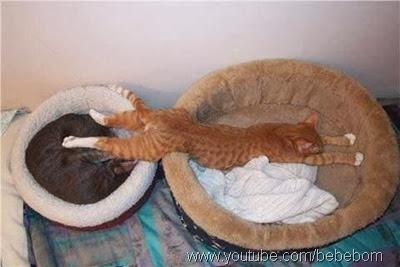 Os melhores lugares para dormir9