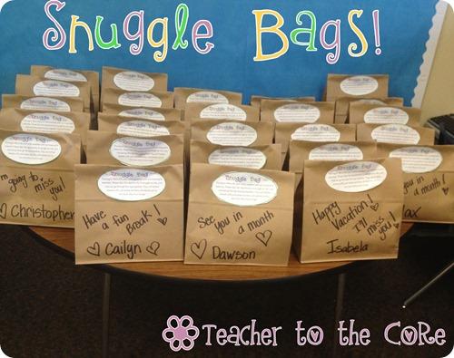 Snuggle Bag