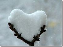 amor todoenamorados (5)