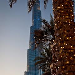 20131130-Dubai2013-04162.jpg