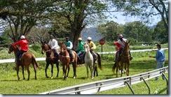 Horse Racing_08 16 14_0018