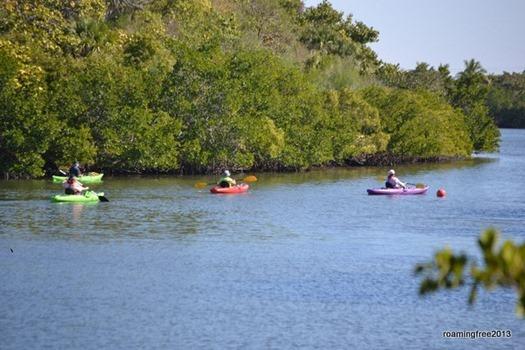 Colorful Kayaks