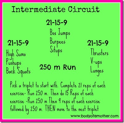 int.circuit