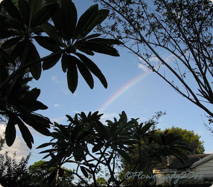 09-28-rainbow12