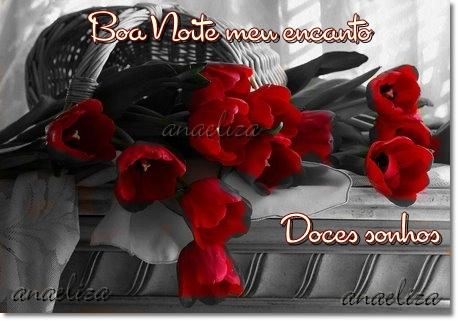 Boa noite meu encanto Tenha doces sonhos rosas ver