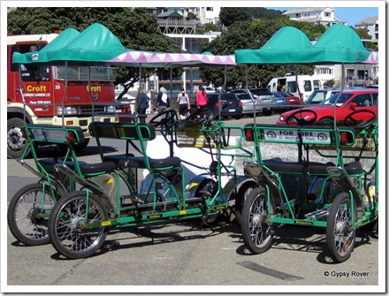 Pedal power to view Wellingtons waterfront.