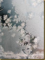 IMG_2433 frostpatterns