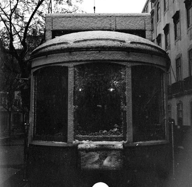 [Nevo-1945.84.jpg]