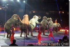 Aug20_Circus2
