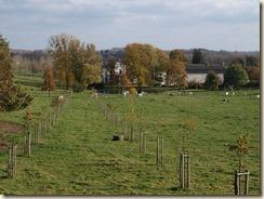 Gors-Opleeuw: het kasteel van Opleeuw verscholen achter bomen. Zicht van op de Opleeuwstraat,  bij het begin van de Elleboogstraat