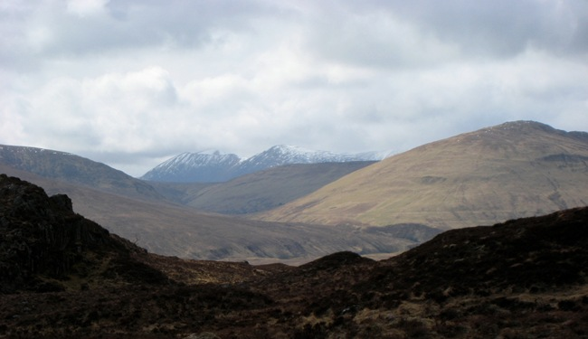 LOOKING ACROSS GLEN ROY