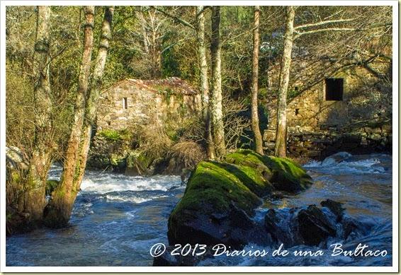 Refugio_Verdes-30