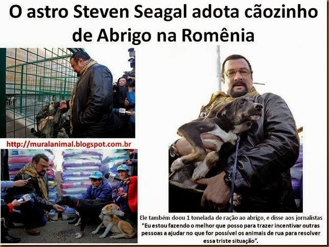 steven-seagal1