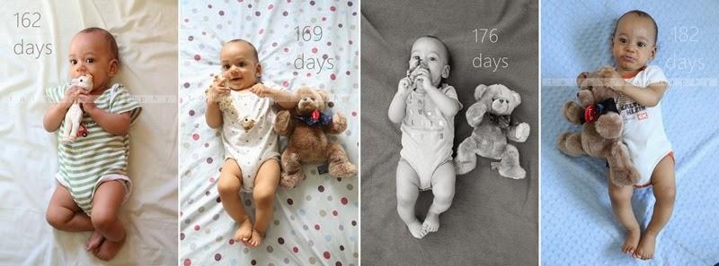 162-182 days-horz