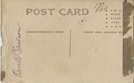 Horses Orville Paulson RP Postcard DL Antiques back