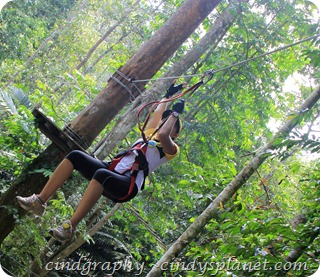 SkyTrex Flying Fox Tryout