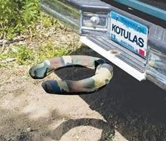 bumper dumper