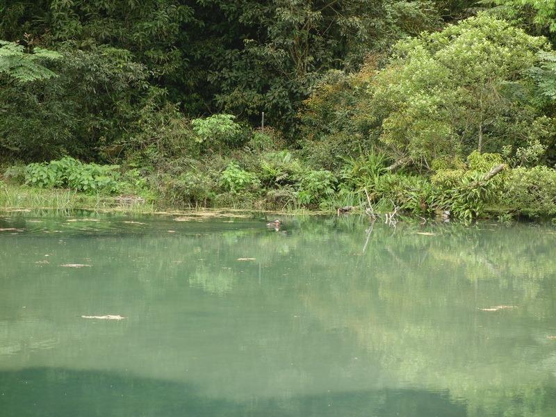 2013_0415-0418 福山植物園-6_019