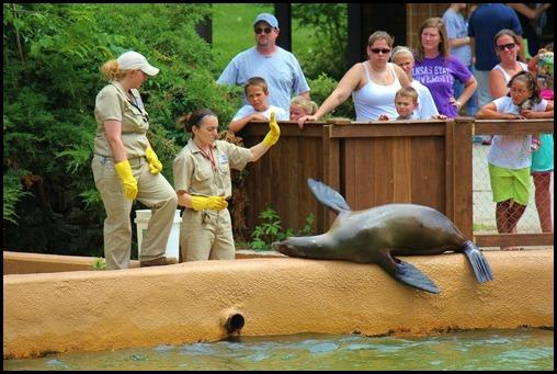 Zoo4 423