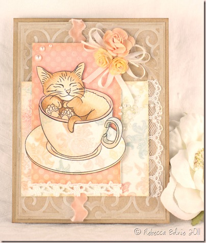 kitten in tea cup