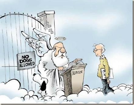 cielo paraiso humor ateismo biblia grafico religion dios jesus (50)