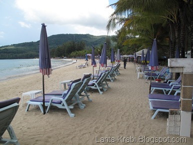 Kamala Beach Sun Loungers