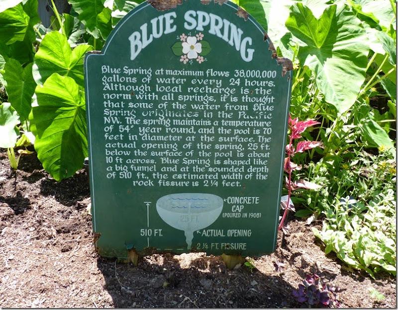 Blue Springs AR