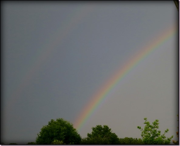 RainbowIMG_3351