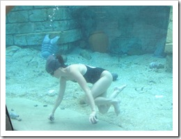Florida vacation Epcot girl diving for oysters with pearls