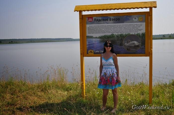 Belovezhskay_puszcza_15.jpg