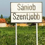 Saniob-2013-MR