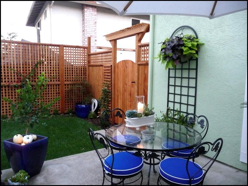 Backyard 013 (800x600)