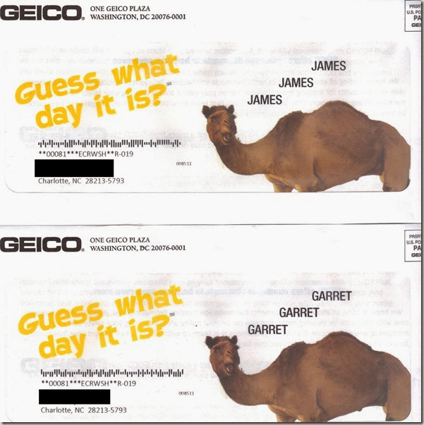 Geico Camel