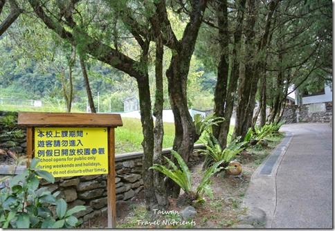 花蓮太魯閣森林小學西寶國小 (5)