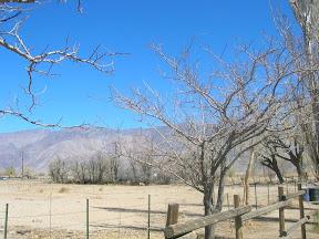 175 - Otras montañas.JPG