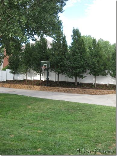 Back Yard Basketball landscape