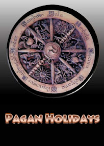 Cover of Anonymous's Book Pagan Holidays