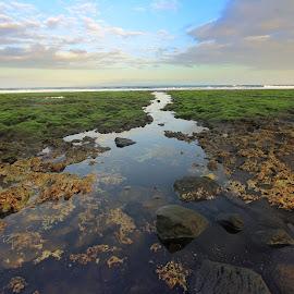 Pantai Cucukan Sore ini by Achem Kw - Landscapes Beaches ( bali, balibeach, balilandscape, cucukan, gianyar, beach )