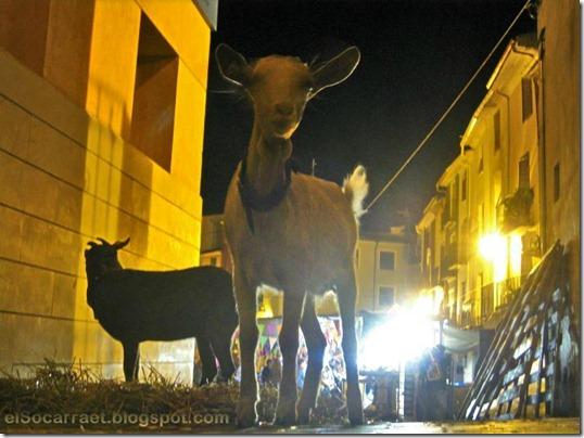 Fira2011 elSocarraet   © rfaPV (41)