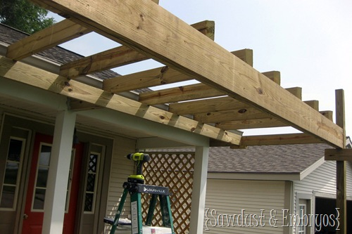 Constructing a Pergola {Sawdust & Embryos}