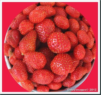 strawberries circle