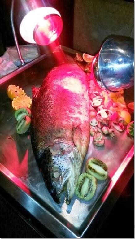 sea bass 1