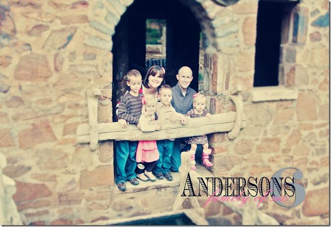 Anderson 29