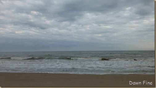 Edisto Beach State Park_007