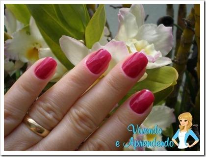AR_Violeta1