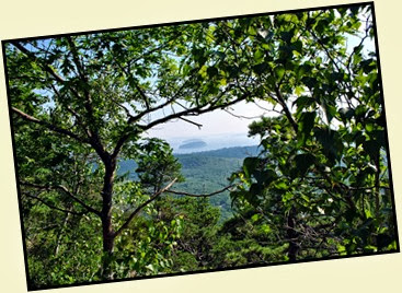 03b1 - Schiff Path - more amazing views